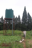 The wter tank which is large enough to irrigate the whole plot, but they need extra pipes